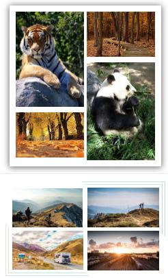 微信公众号文章图片如何并列显示?公众号文章多图排版样式推荐!